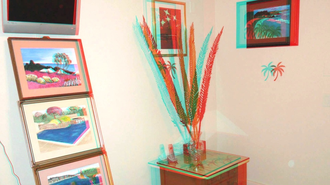 3D Anaglyph Palm Room